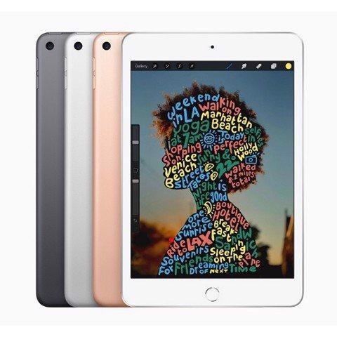 iPad Mini 5 4G 64GB (Likenew- 99%)